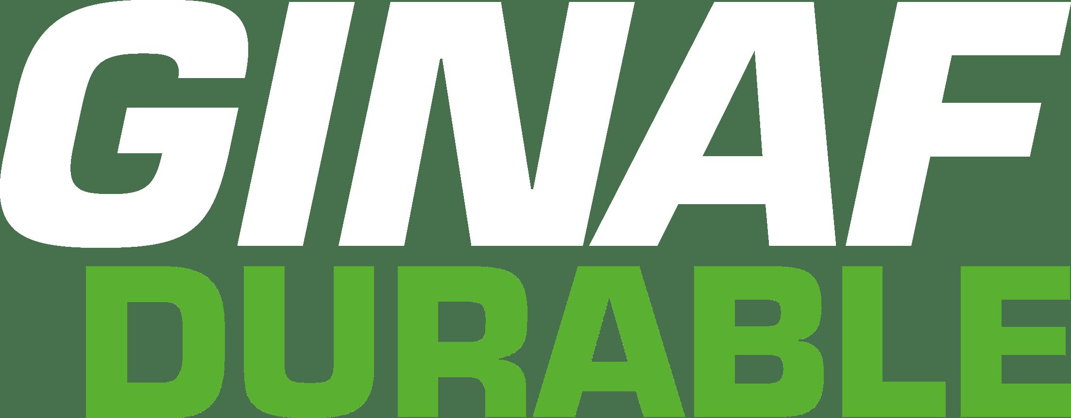 Ginaf Durable voor emissieloos binnenstedelijk en regionaal vervoer.